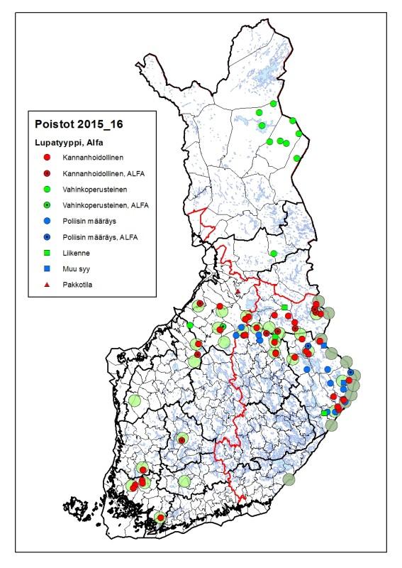 Suden metsästysaikainen ja muu tunnettu kuolleisuus 1.8.2015–29.2.2016. Tunnetut susireviirit on merkitty karttaan vaalean vihreällä ja rajalaumat harmaalla symbolilla.