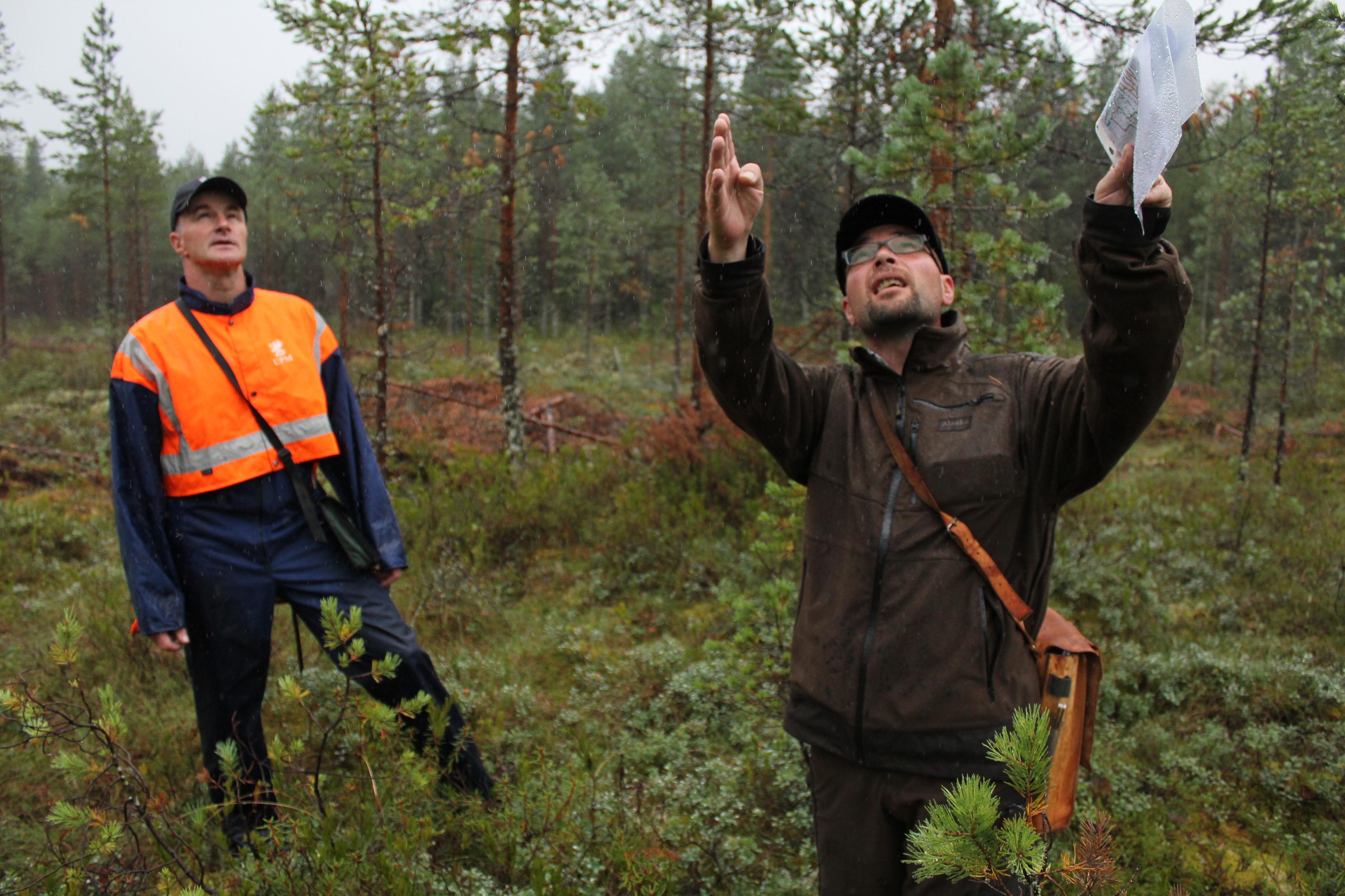 ahti-raina-ohjeistaa-metsurille-puuston-poistoa-9-8-2013-jsiekkinen
