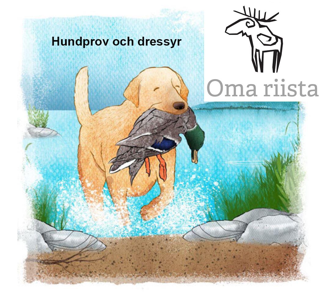 En hund håller en gräsand i munnen. Text: Hundprov och dressyr och Oma riista -logo.